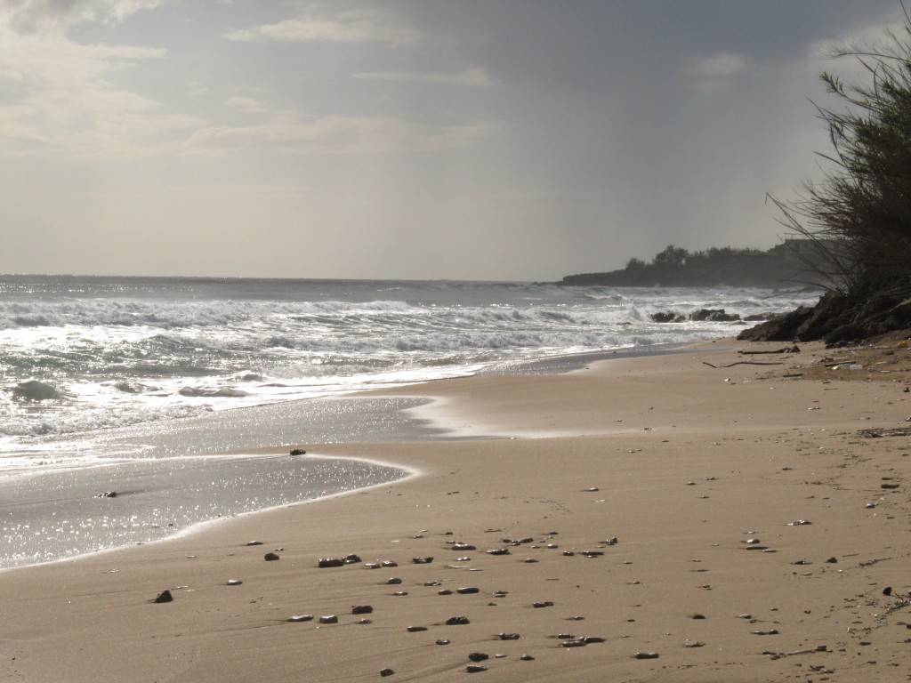 Пляж Агиос Георгиос. Юг